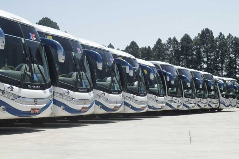 ônibus Executivo Orçamento Iguape - Fretamento de ônibus de Viagem
